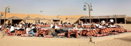 oasis palm desert safari dubai reviews