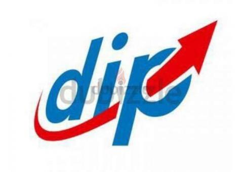 Pick and drop from Sharjah to DIP