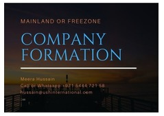Business Formation at Mainland