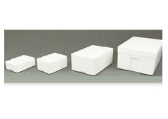 Polystyrene vegetable & dates boxes for sales