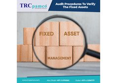 Auditing Company In UAE - Internal Audit Firm