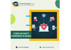 Why Cyber Security is Important for Every Oraganiation?