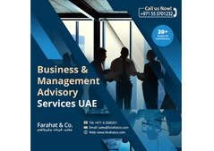 Business and Management Advisory Providers